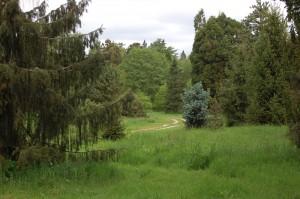 Arboretum de Chèvreloup - photo Marc Giraud