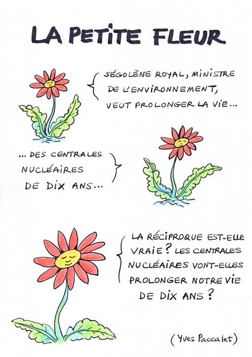 La-Petite-Fleur-Paccalet